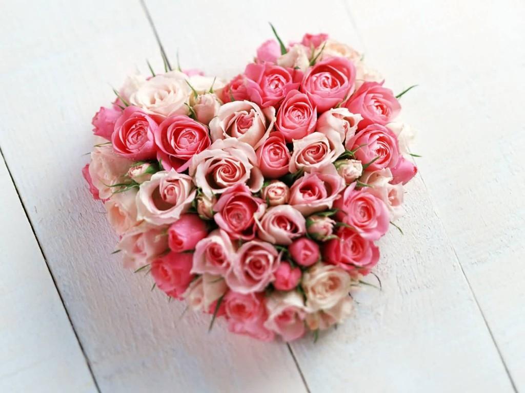 Белые и красные розы обои фото сборка