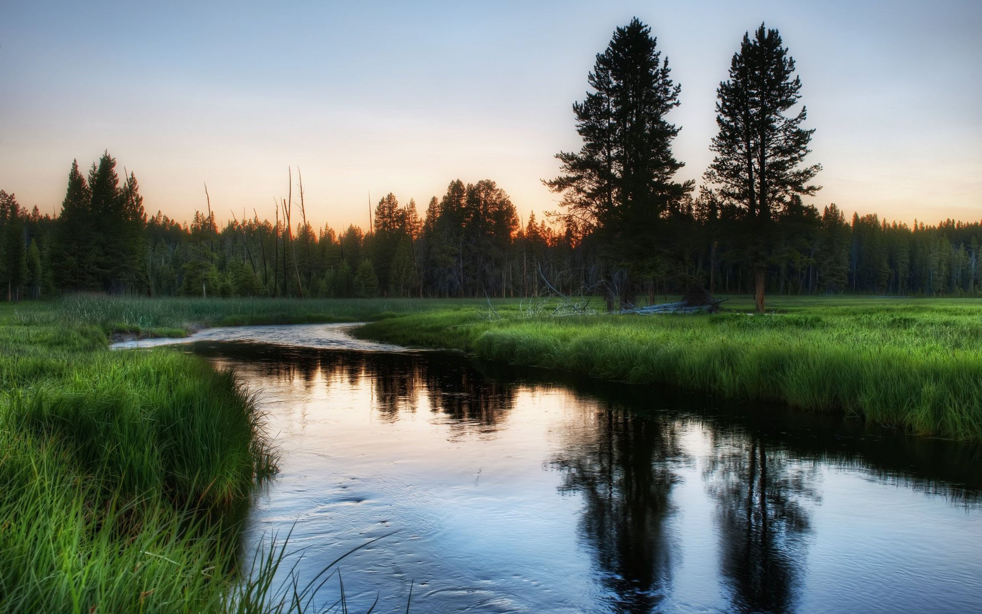 Природа речка зелень деревья утро
