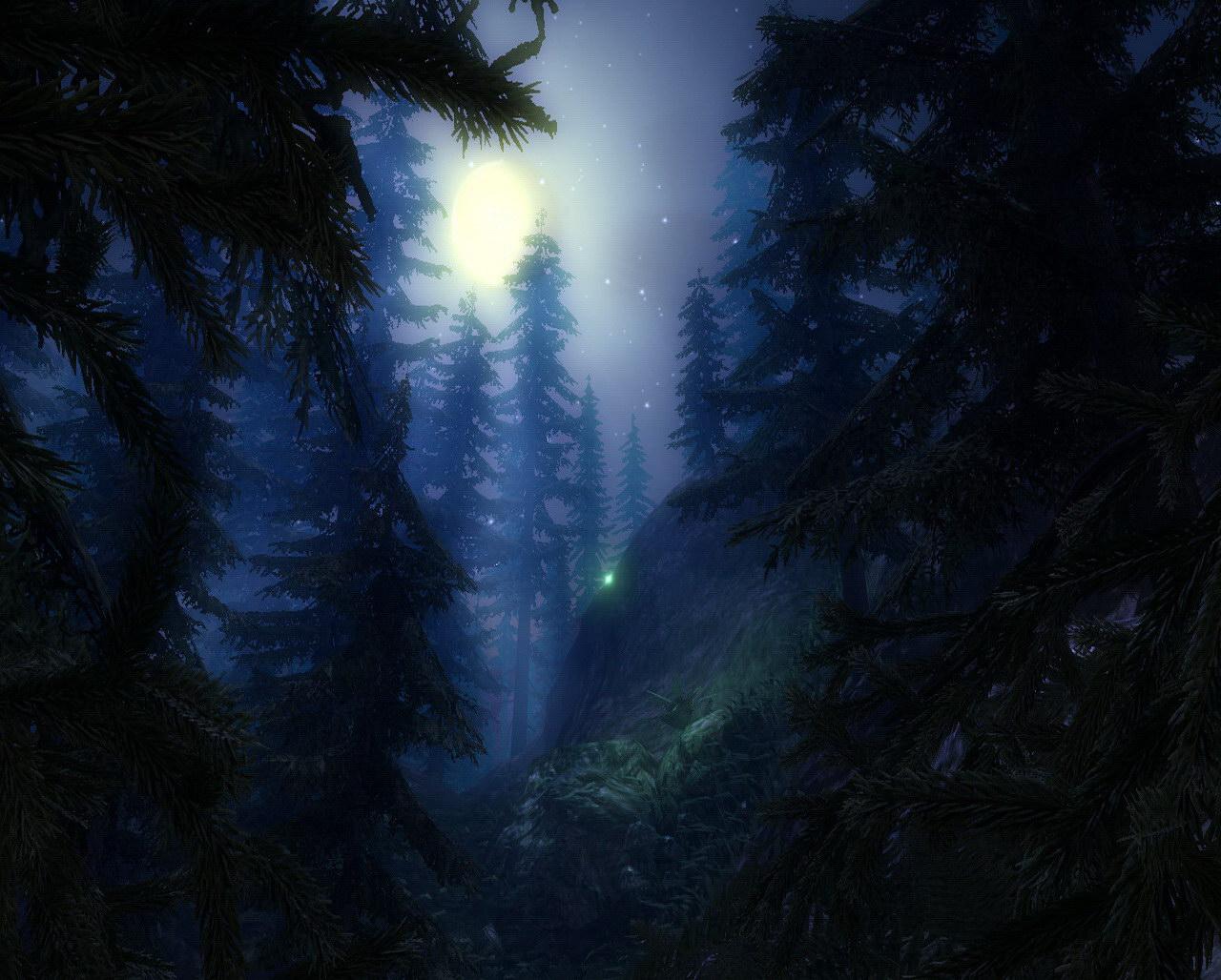 Лес под звездным ночным небом обои