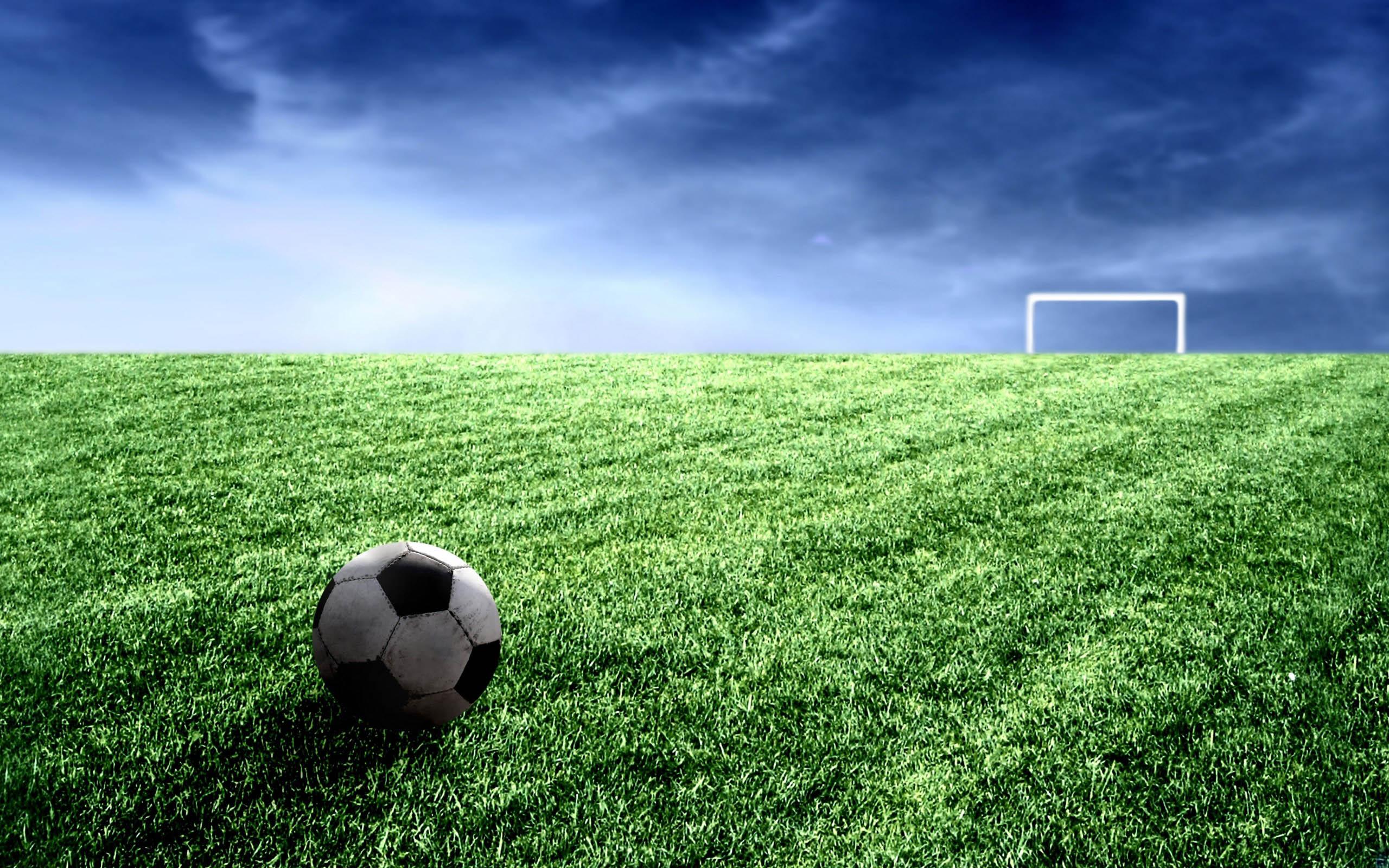... поле обои, фото Зеленый газон картинки: www.wallplanet.ru/photo/sport/futbolnoe_pole/17-0-11656