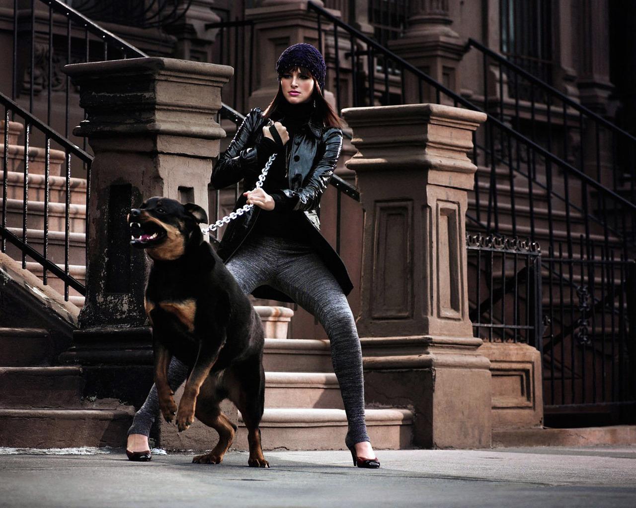 Скачать бесплатно обои на рабочий стол с собакой