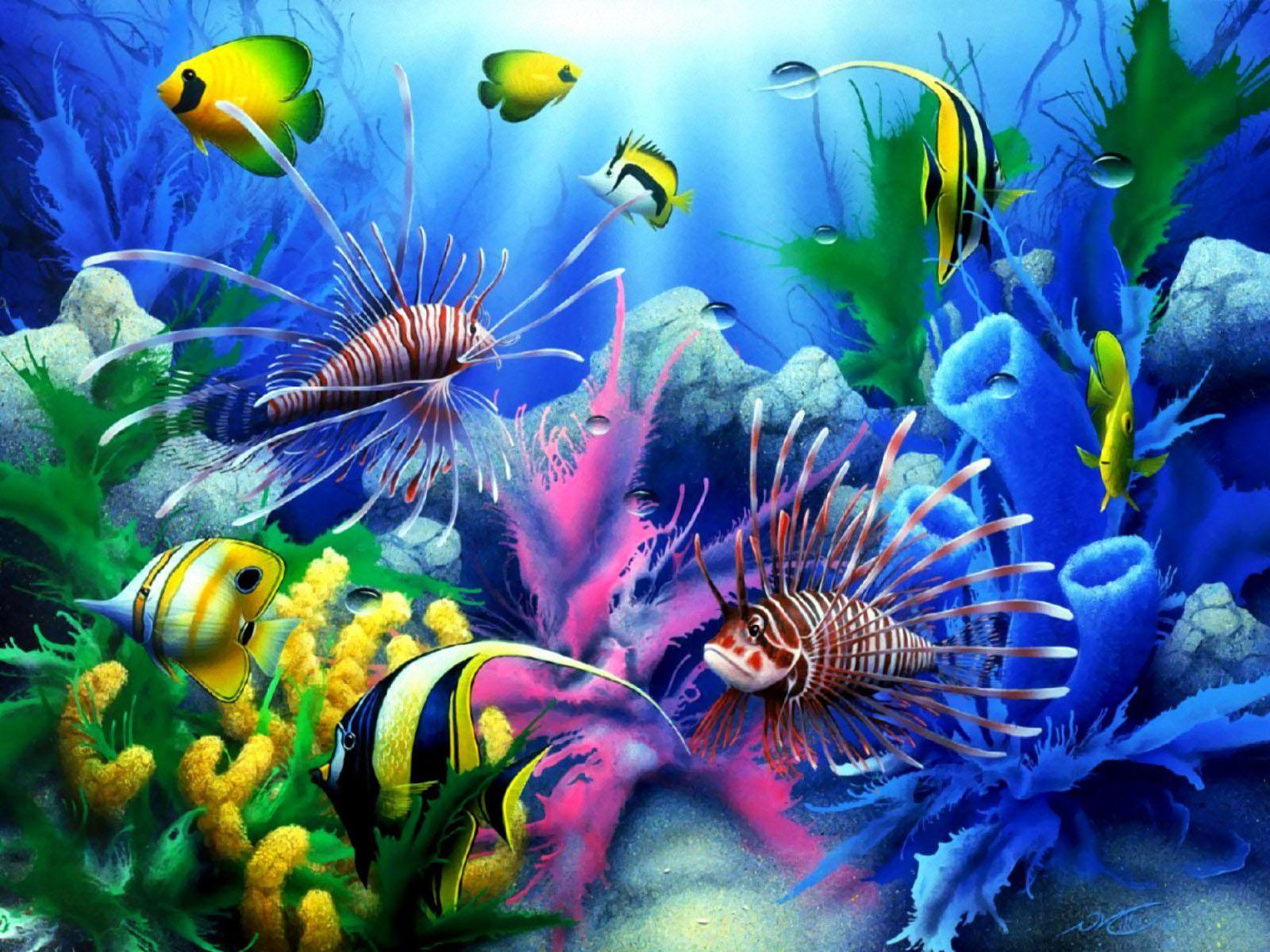 Обои фото море рыбы подводный мир