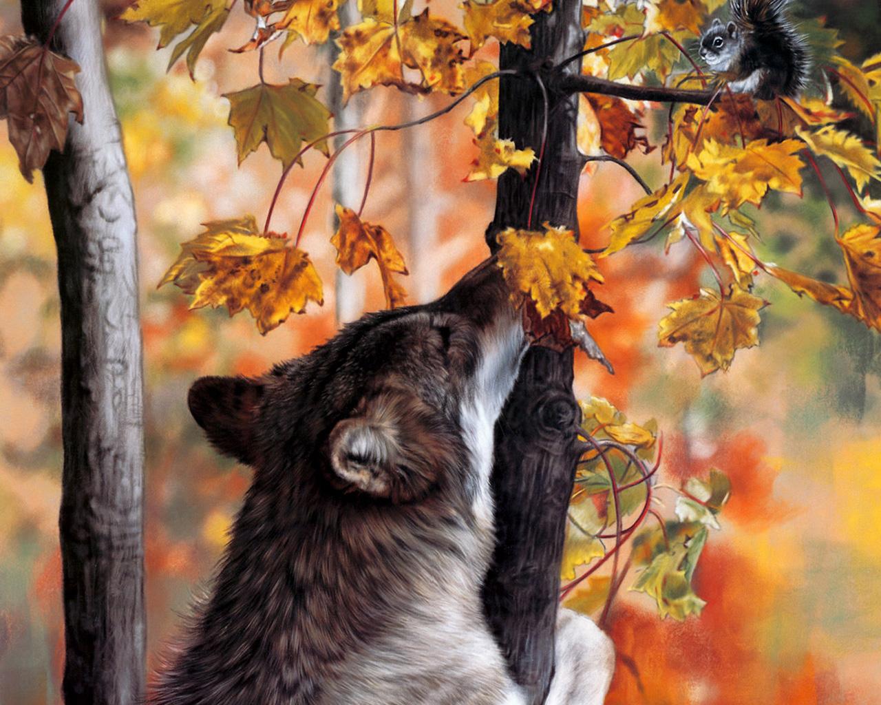 Волк в осеннем лесу обои, скачать картинки на рабочий стол ...